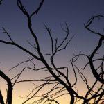 As predicted, more branch prediction processor attacks are discovered | Ars Technica